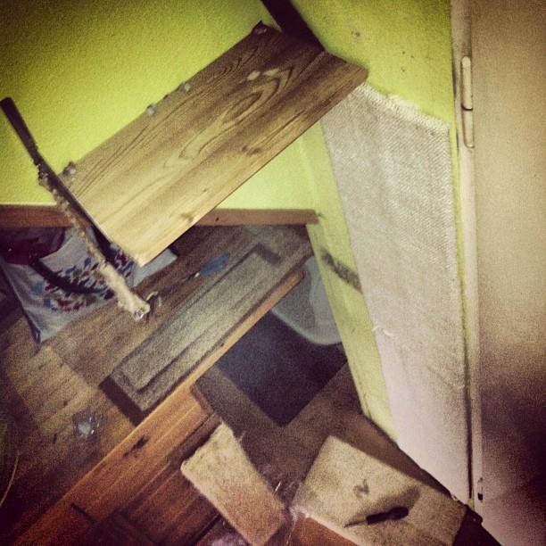 umbau der katzen kletterwand ist abgeschlossen bilkorama. Black Bedroom Furniture Sets. Home Design Ideas