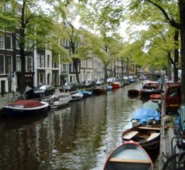 Amsterdam fever.