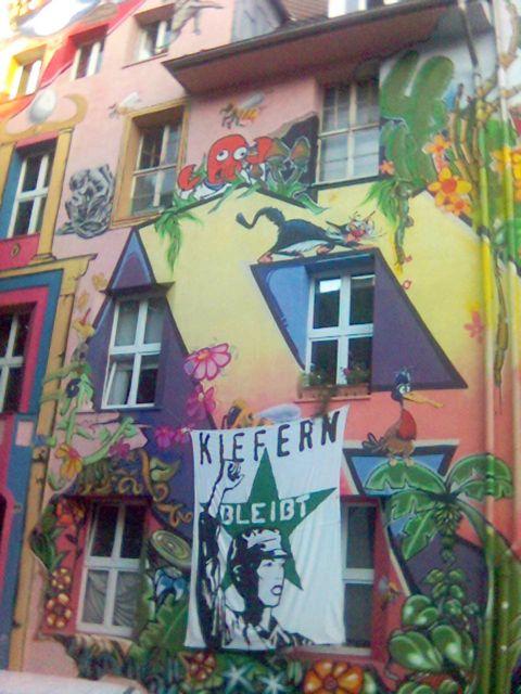 """30 Jahre """"Kiefern"""" in Düsseldorf"""