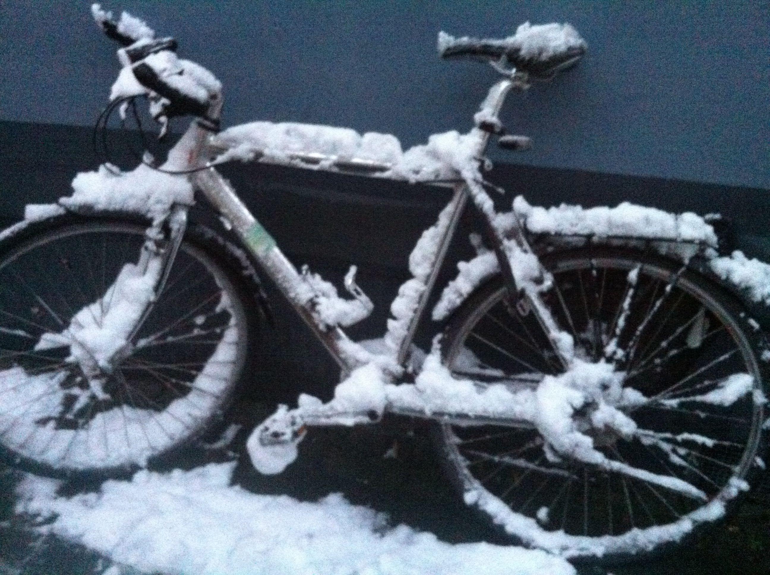Anwohneridee: Fahrrad-Parkhaus in Bilk
