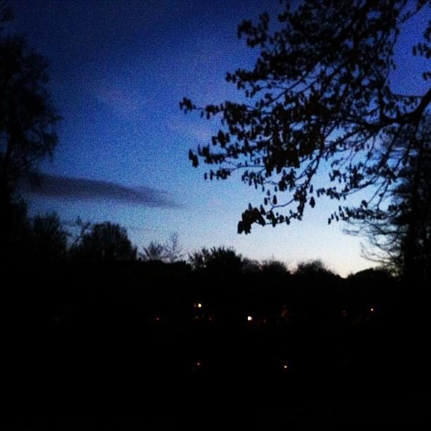 Von Schwarz zu Blau. Sonnenaufgang in Amsterdam.