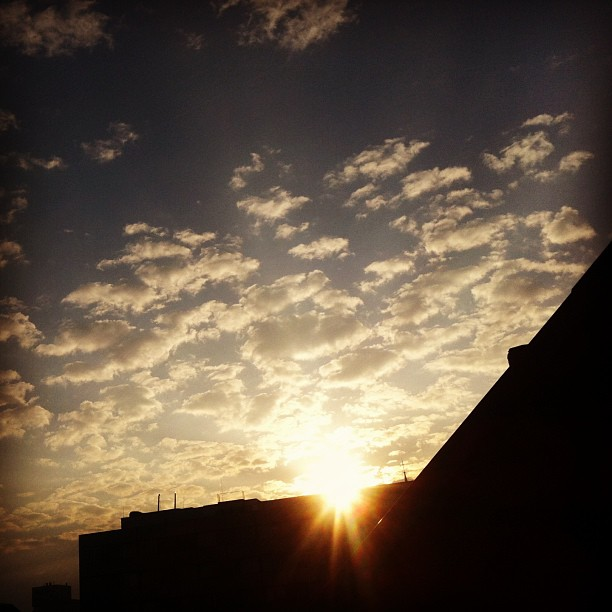 Morgens, auf dem Dach :-)