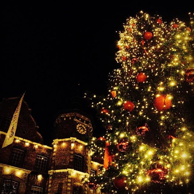 Gedankenfetzen: Trotz Lichtern und Deko - der Baum würde mir im Wald bei Lillehammer besser gefallen... Wieviele Weihnachtsbäume werden wohl nur für Düsseldorfer Wohnzimmer gefällt werden?