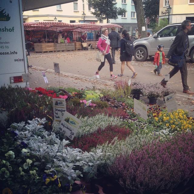 Der obligatorische Einkauf aufm Bauernmarkt vorm Wochenende