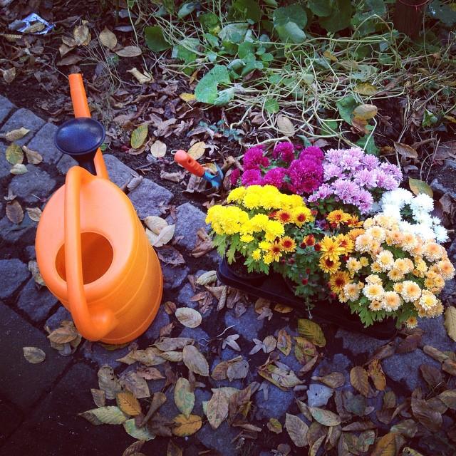 Einfach mal den Nachbarn ein paar Blumen vor die Tür pflanzen.