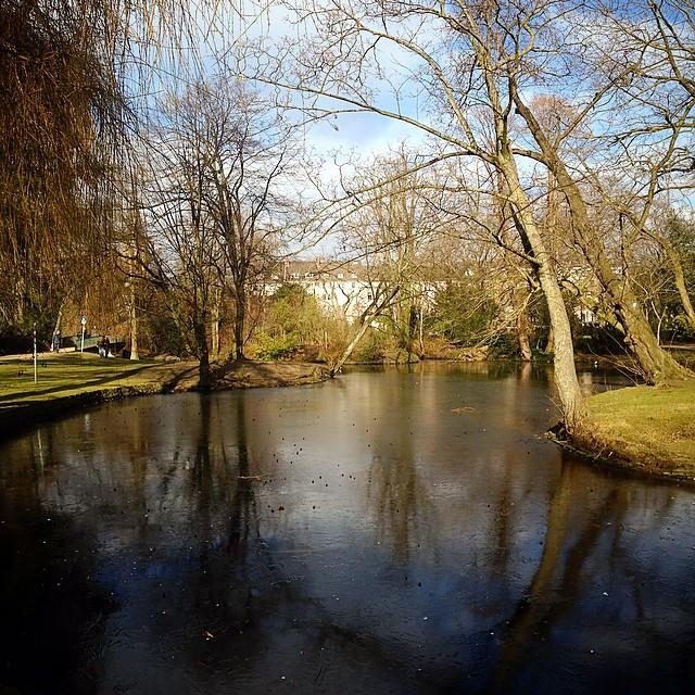Klare, frische Luft und dazu ein wenig Ruhe. Kurze Stippvisite im Florapark…