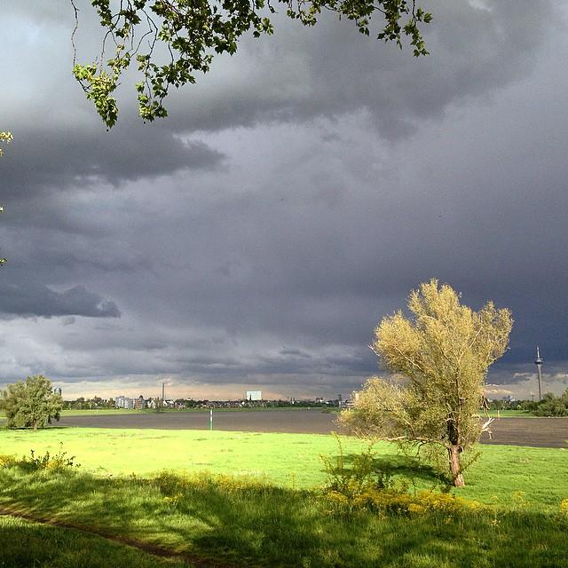 Schöne Aussicht (entschädigt ein wenig für den hoax der RegenradarApp) :-)