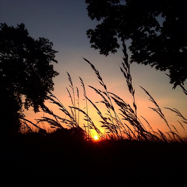 Kleine abendlich Fahrradtour durch das Umland - hat was entspannendes.