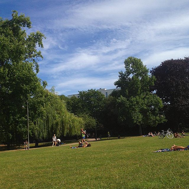 Sonnige Auszeit im Park.