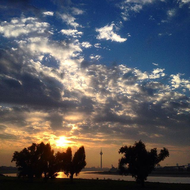 … dies war übrigens der Blick heute Morgen über den Rhein.