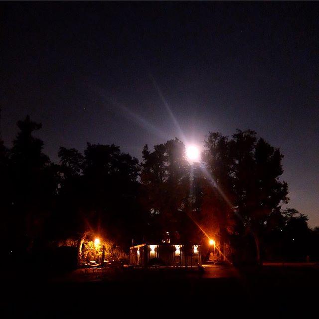 Vollmond im Park an der alten Sternwarte.