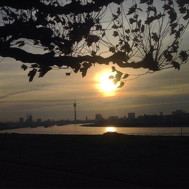Morgendliche Auszeit an der Biegung des Flusses…