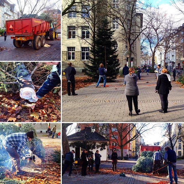 ... und nach knapp einer Stunde schnitzen & schuften steht auf dem Friedensplätzchen auch in diesem Jahr wieder ein Weihnachtsbaum :-) Danke an die Florabar und den Benninghof und die netten NachbarInnen und PassantInnen die tatkräftig mitgeholfen haben :-)