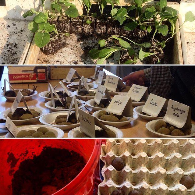 Pflanzen, Saatgut, Wissen und Praxis – eine charmante Kombination :-)