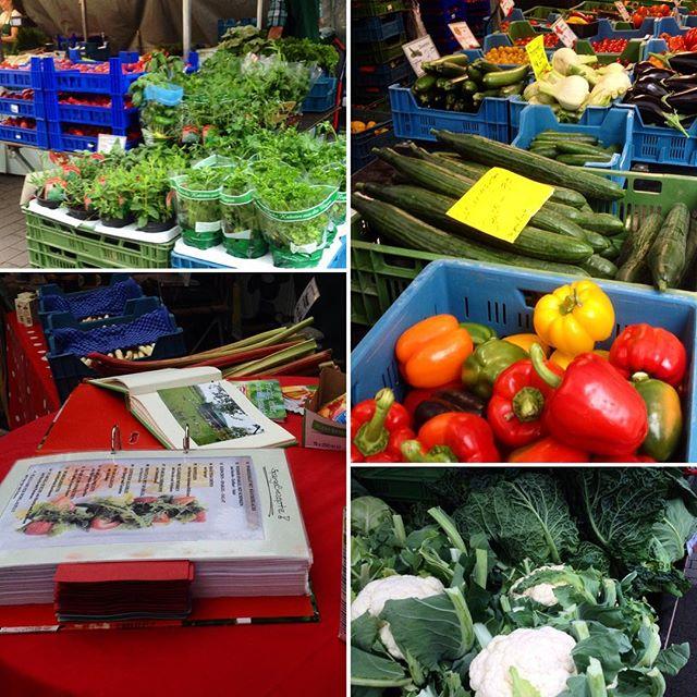 Du hast Lust auf frisches & leckeres Gemüse aus der Region?