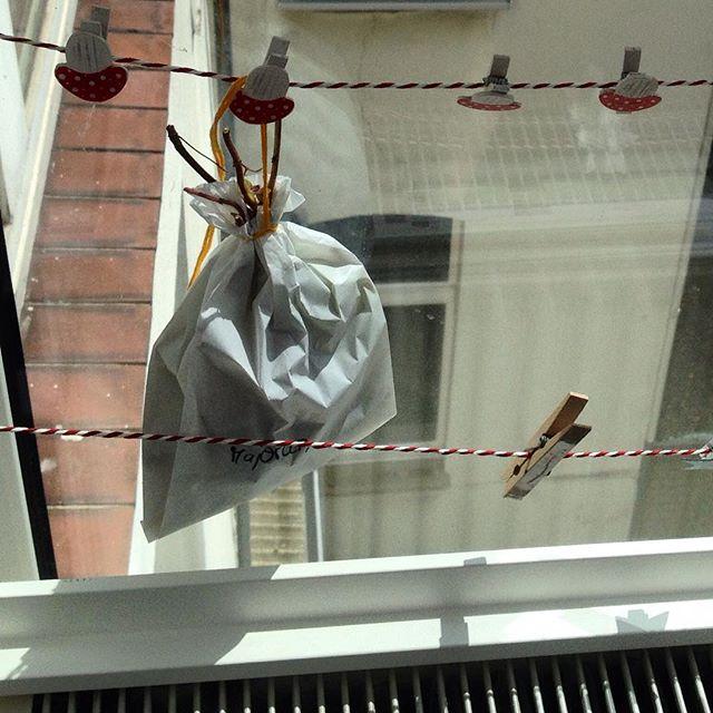 Die ersten Kräuter sind geerntet und hängen luftig zum Trocknen im Fenster... #urbangardening