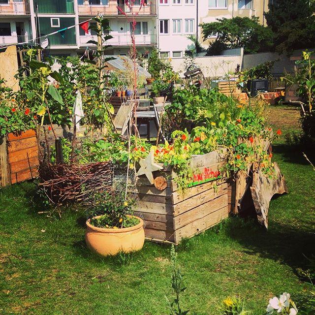 Gartentreffen bei Düsselgrün – um ein wenig Pflanzen zu pflanzen.