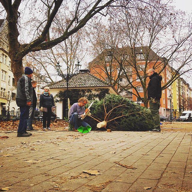 Weihnachtsbaum Challenge auf dem Friedensplätzchen :-)