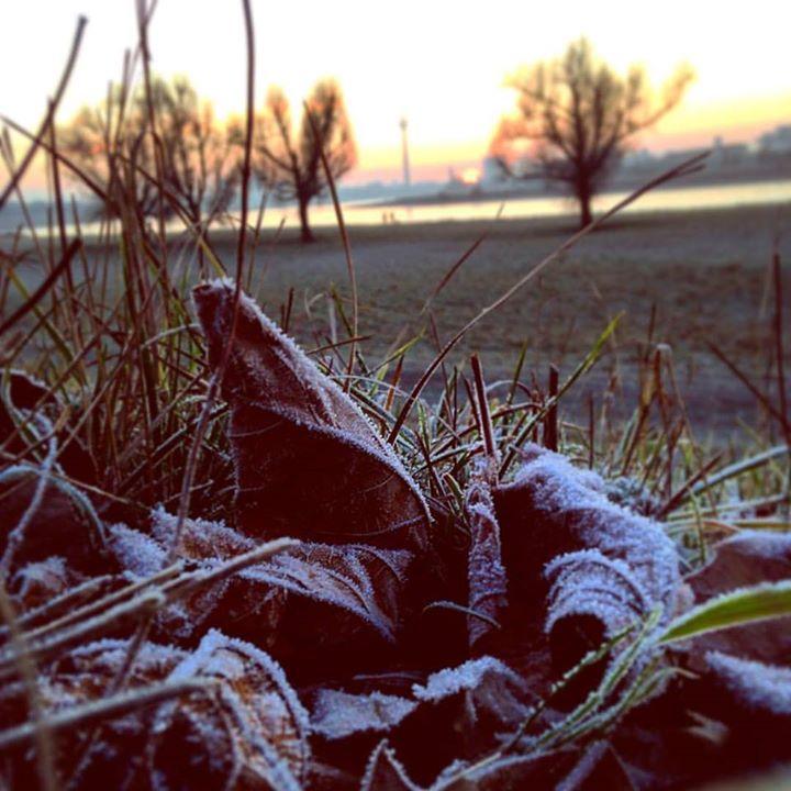 Wenn die Kälte einem in die Schuhe kriecht …