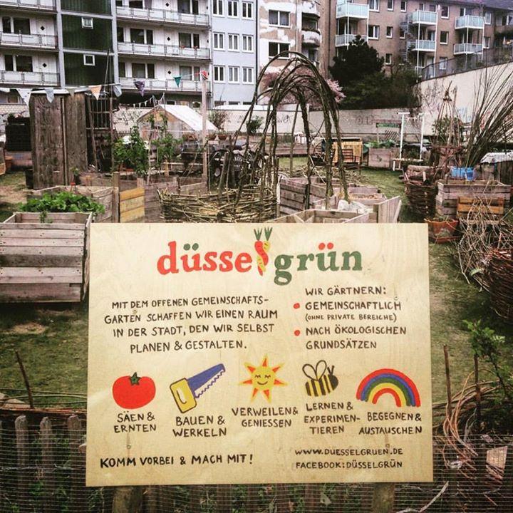 Gemeinsam Obst und Gemüse anbauen.