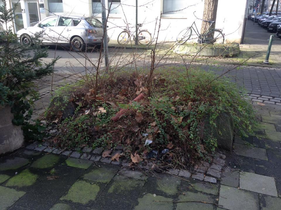 Florastraße - Ecke Fürstenwall