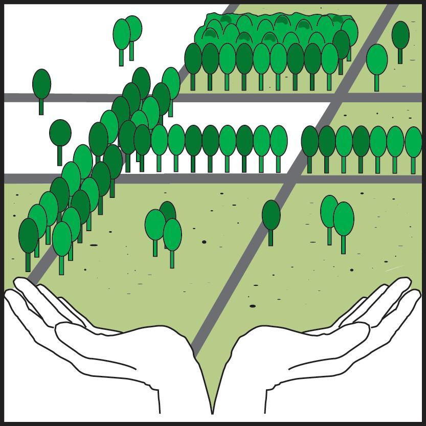 Einfluss von Grünflächen auf das urbane Mikroklima