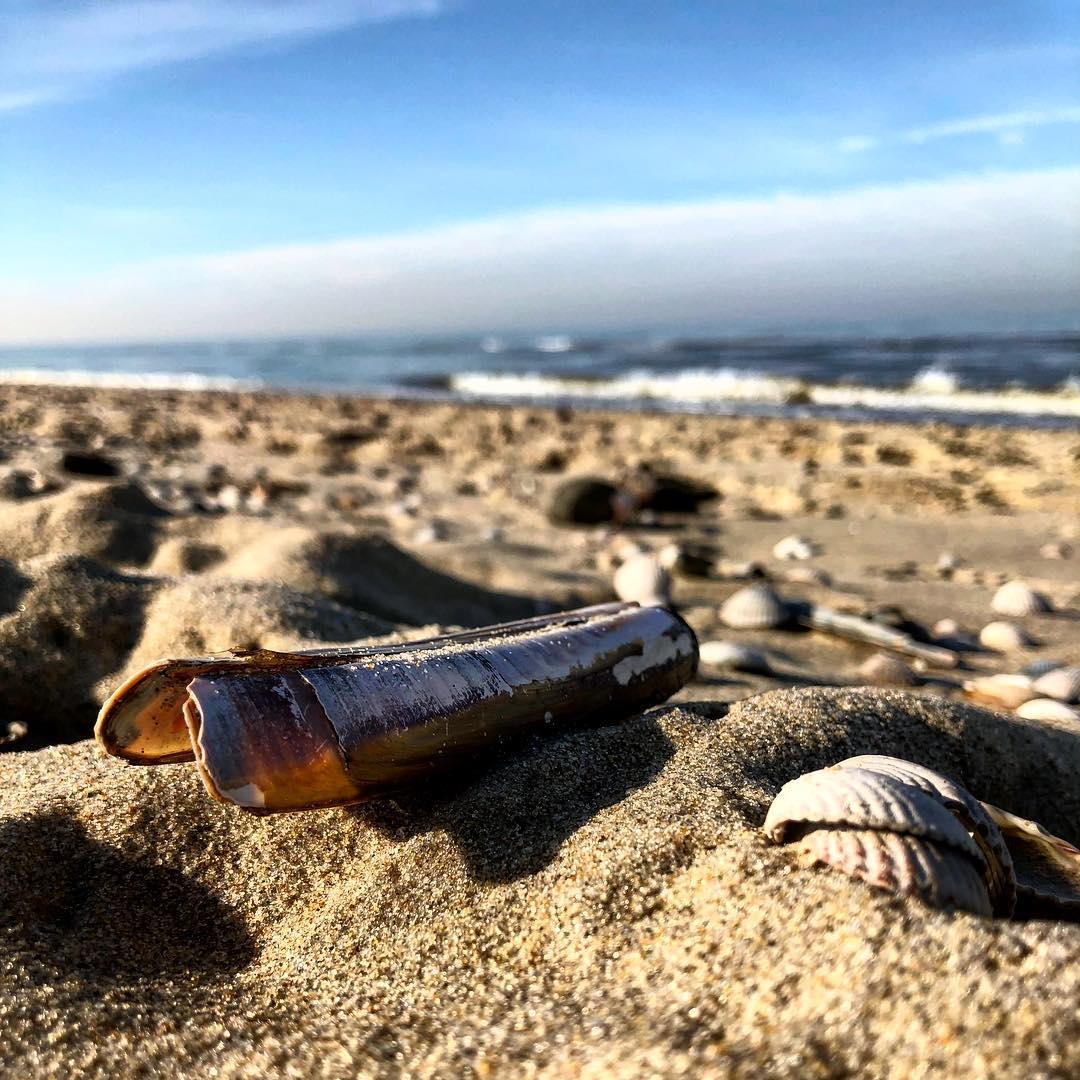 Im Hintergrund schwappt die Nordsee träge an den Strand und man selbst genießt die wärmende Frühlingssonne. Da stört auch nicht der noch leicht kalte Hintern ;-) By the way, der Sand ist gerade perfekt um Sandkuchen zu 'backen